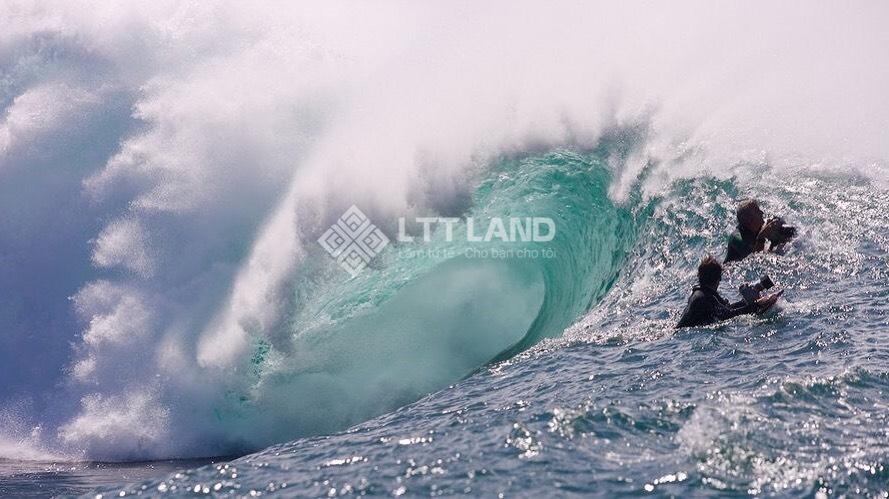 biển Đà Nẵng - LTTLand (6)