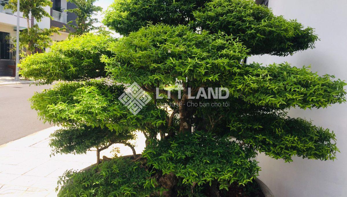 4x3-căn hộ - hiện đại - fpt-city-đà nẵng-lttland (5)