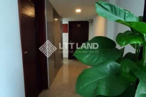 LTTLand-Can-ho-cho-thue-1-phong-ngu-rieng-tai-Phan_Tu-dai-dien