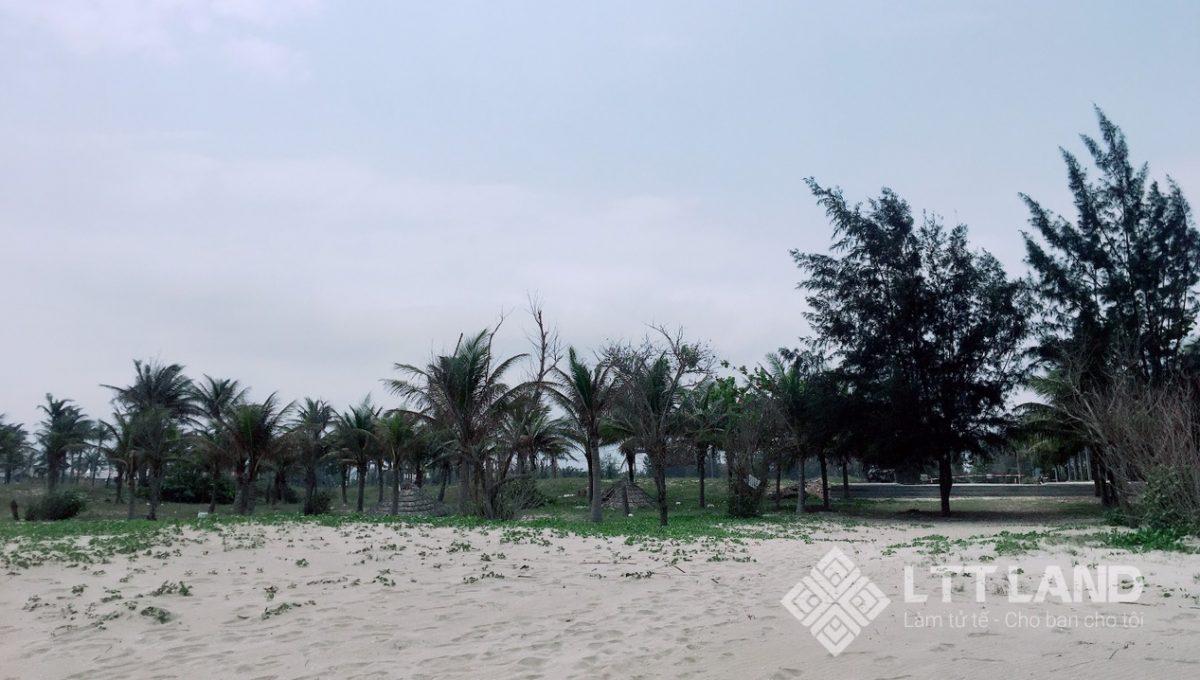 Ban-dat-bien-Ha-My-Quang-Nam