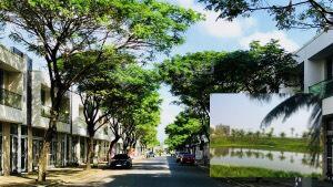 Bangapnha- shophouse-FPT- gia cham đay-lttand (6)