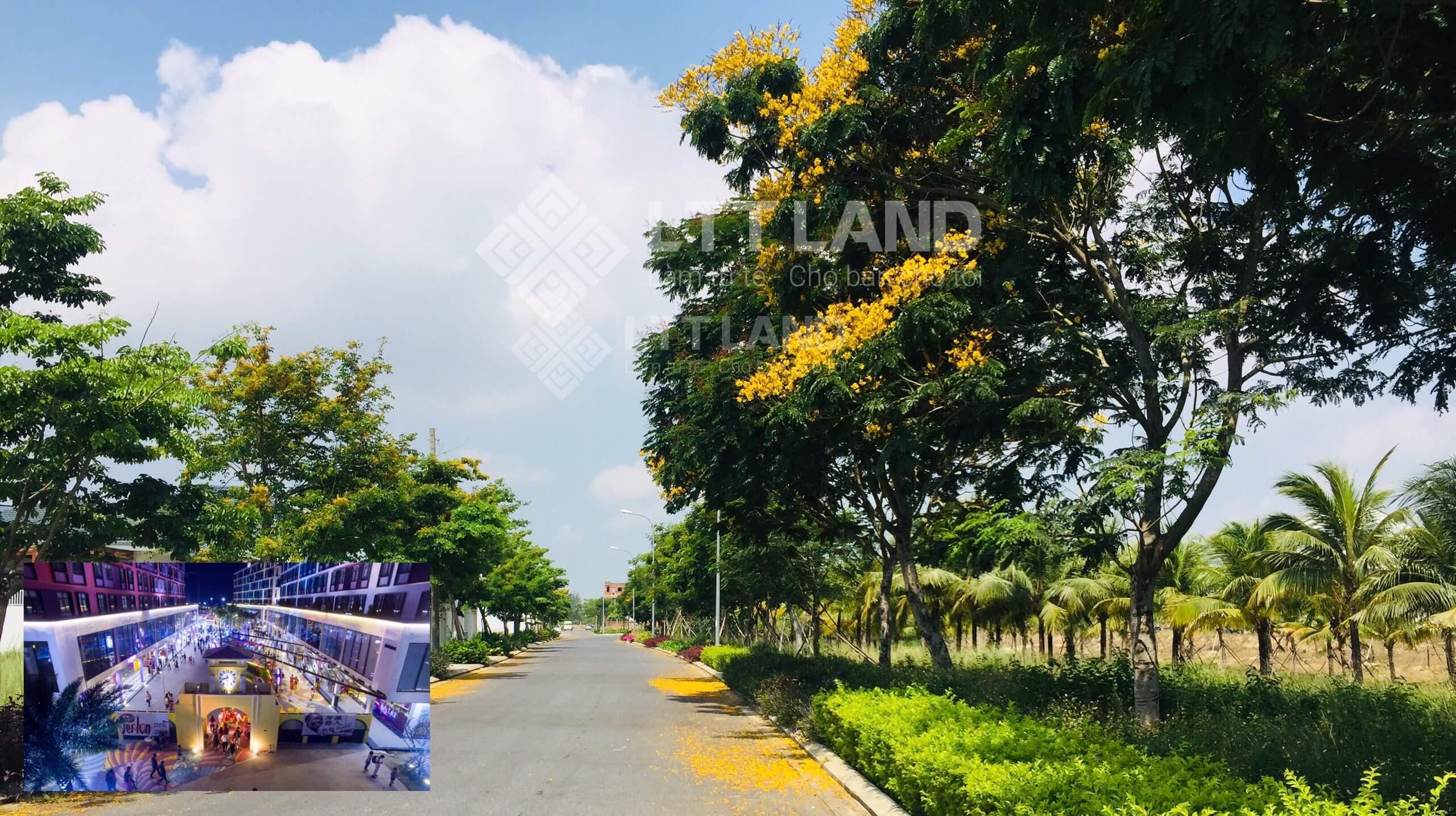 Bán đất FPT Đà Nẵng 180m2