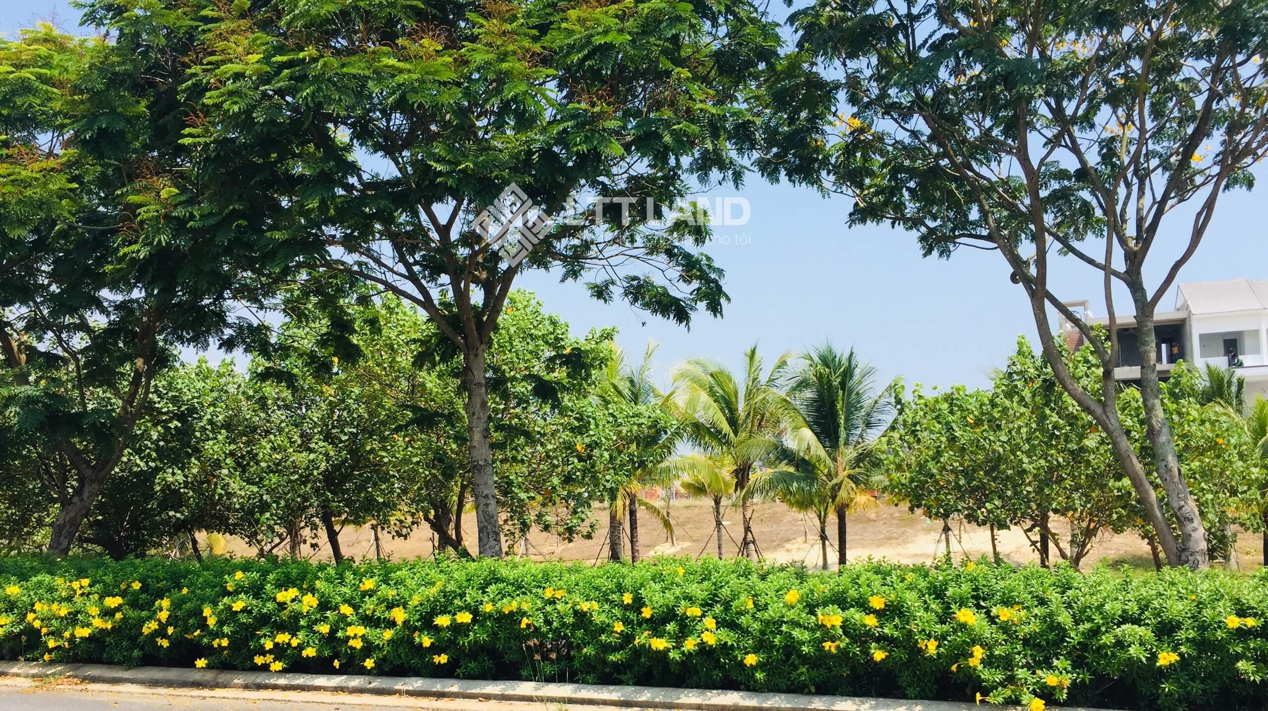 Bán lô đất 108m2 FPT Đà Nẵng Cắt lỗ hơn 1,5 tỷ