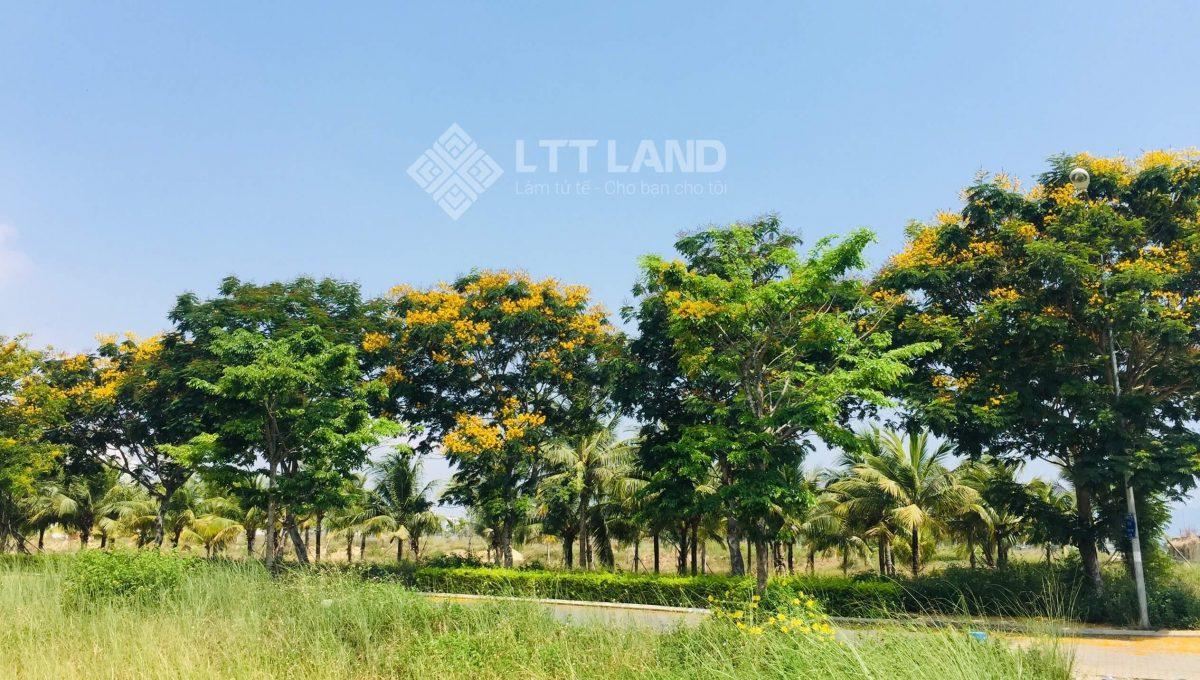 Can ban nhanh 144m2 FPT City Đa Nang-lttland (7)