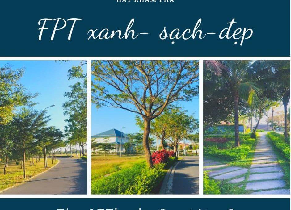 FPT-lttland (5)